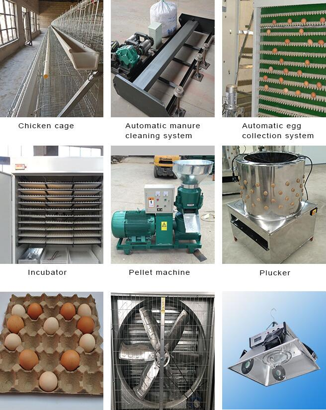 Vertical Type Poultry Farm Equipment / Livestock Feed Mill Equipment